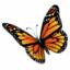 SSuite Office WordGraph