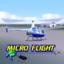 Micro Flight