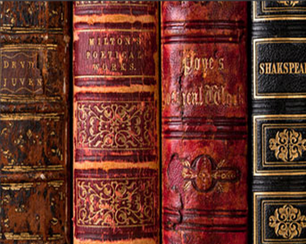 Beauty of Books Theme of Books Theme Free
