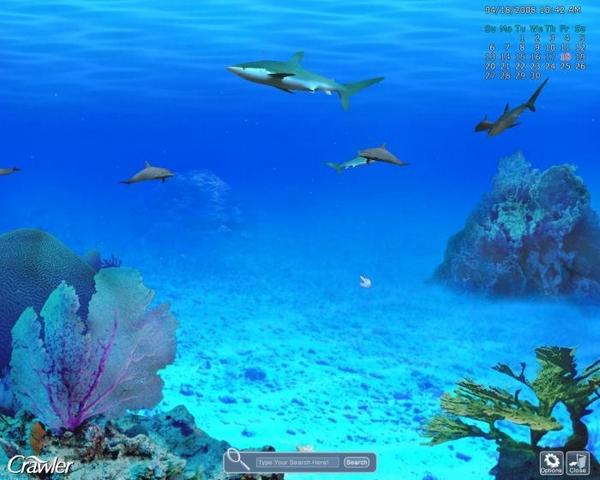 Images 3d marine aquarium screensaver for Marina aquarium