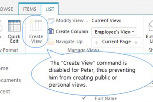 SharePoint Column/View Permission